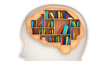 brain-memory-istock_000021178612